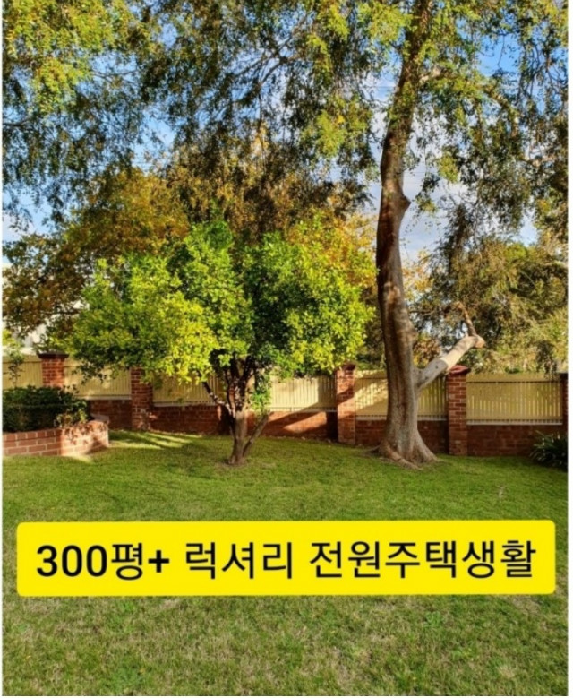 Screenshot_20200702-015148_Naver Blog2.jpg